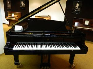 Ten Best Piano Brands Today 2019 The Singers Corner